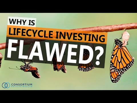lifecycle-investing-why-is-lifecycle-investing-flawed