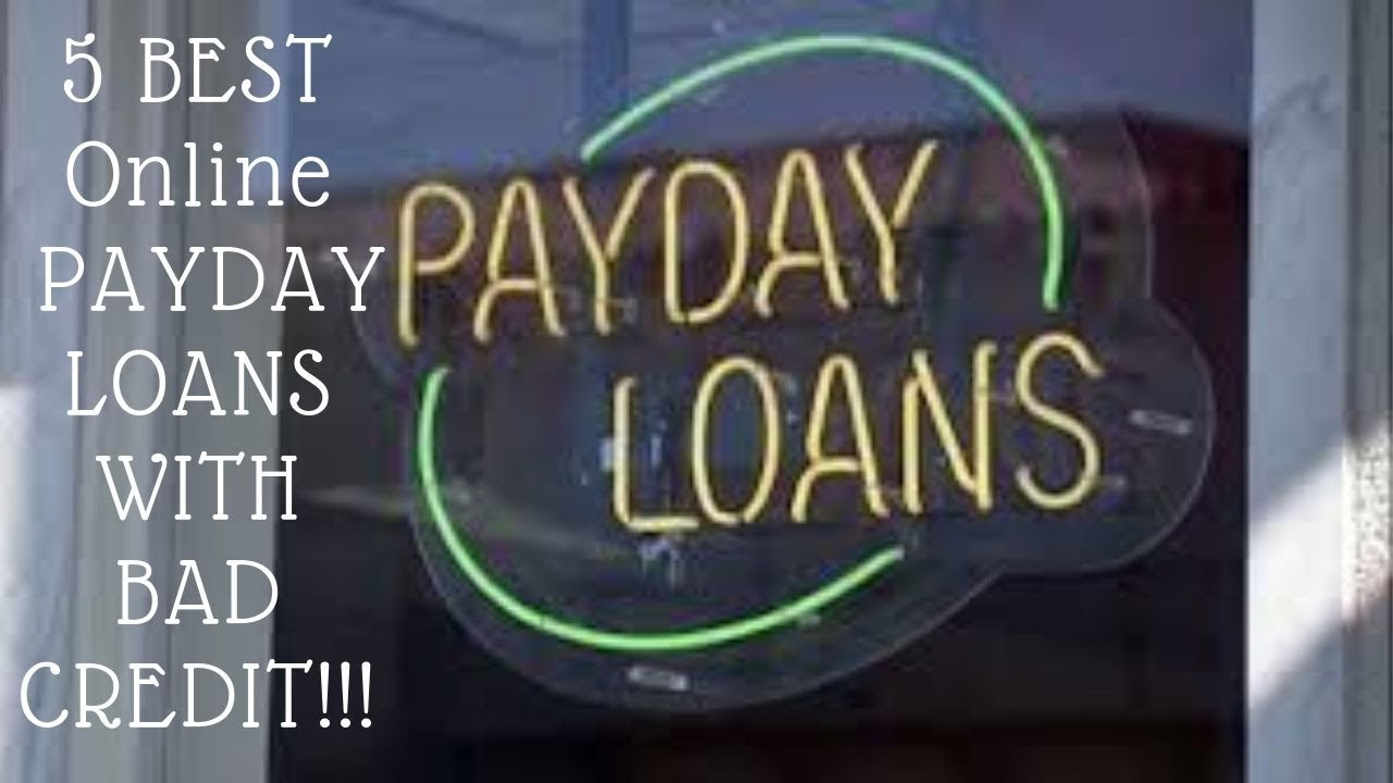 amscot-loan-5-best-online-payday-loans-with-no-credit-check-and-bad-credit-2020