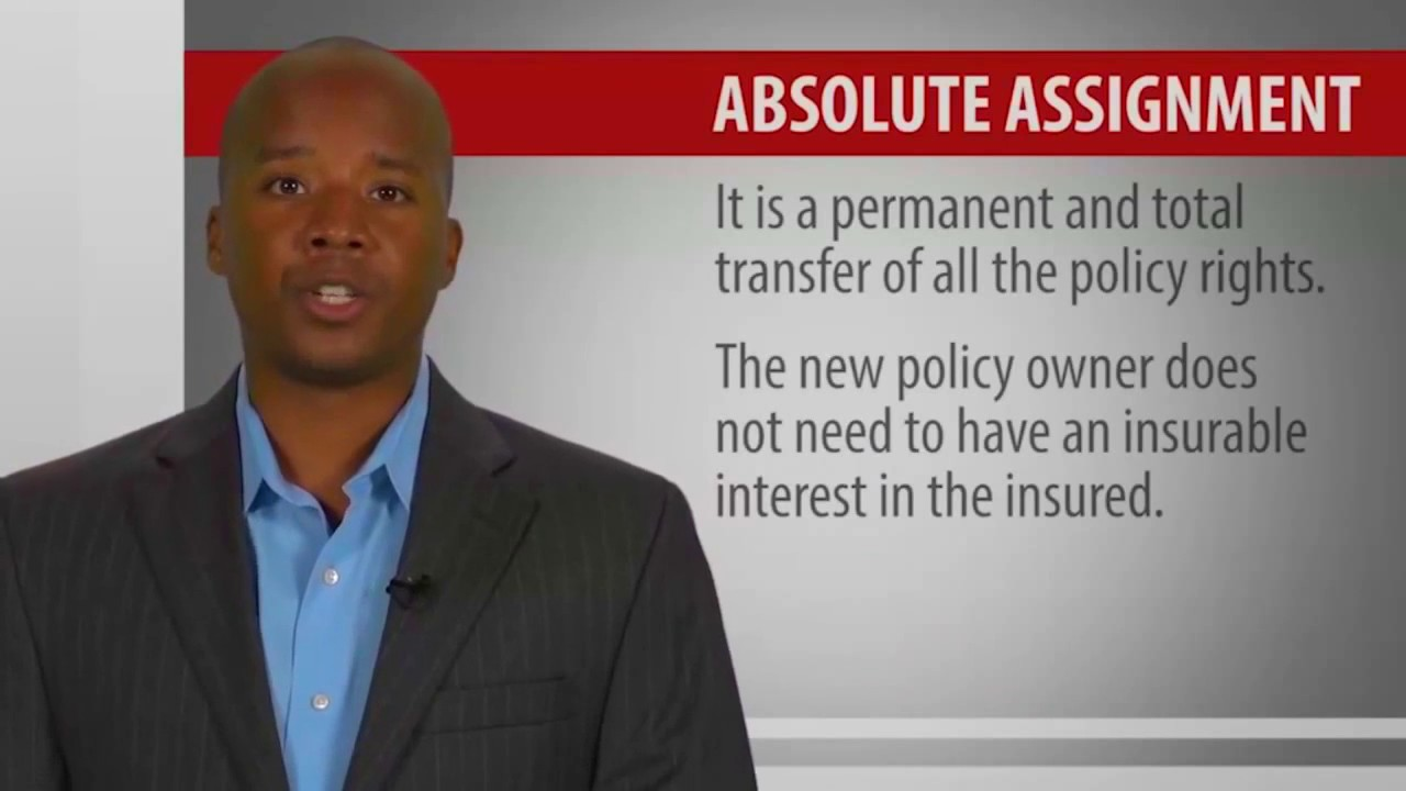 automatic-premium-loan-provision-4-life-insurance-policies-provisions-options-and-riders