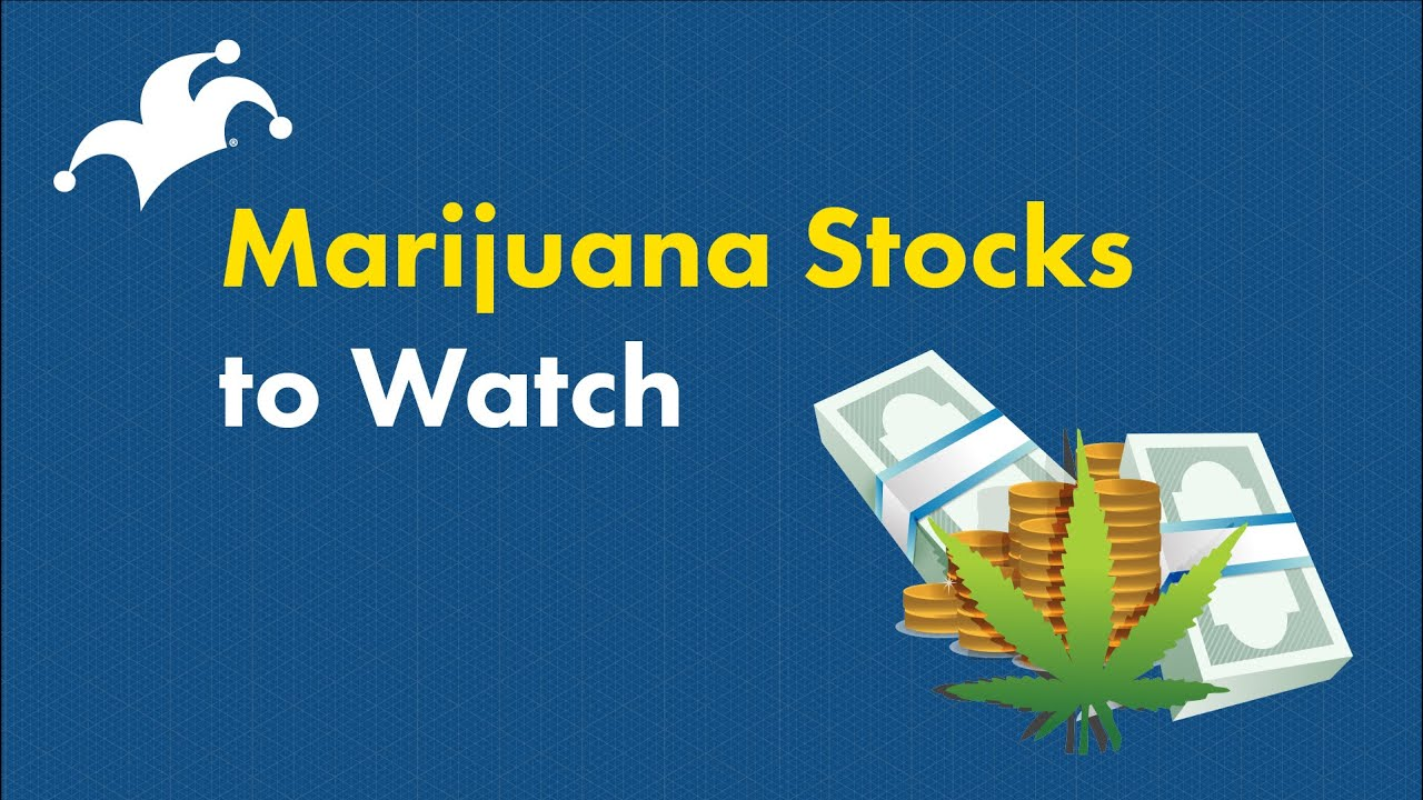 marijuana-stocks-which-ones-are-the-best-buys