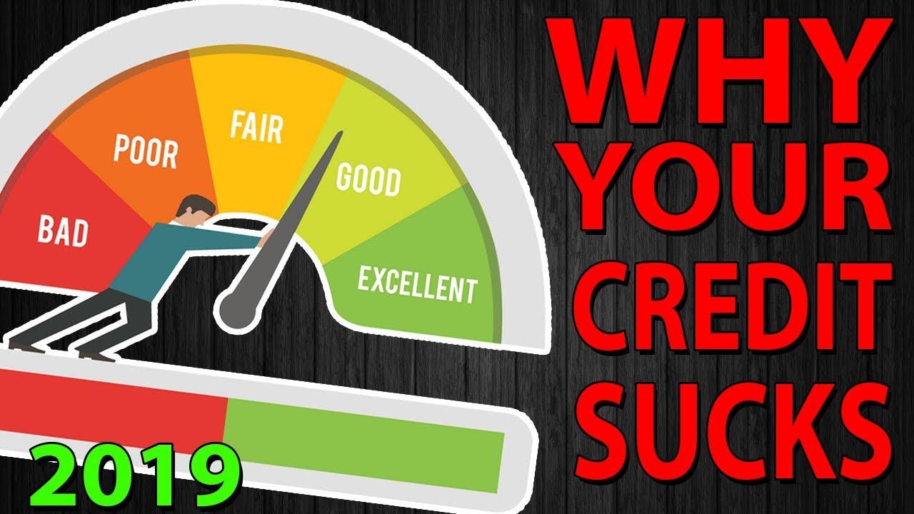 is-743-a-good-credit-score-should-you-fix-your-credit-score