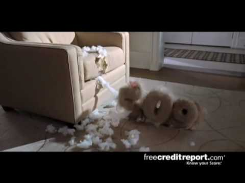 745-credit-score-free-credit-report-com-hilarious-commercial-good-745-high-quality