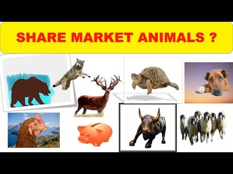 stock-market-animals-animals-of-stock-market-bulls-bearschicken-pigs-stags-dogs-and-others