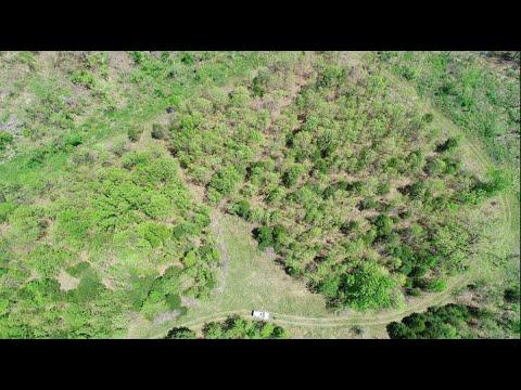 scottsburg-building-and-loan-owner-financed-5-acres-land-for-sale-500-down-build-camp-hunt-instantacres-com-idbh32